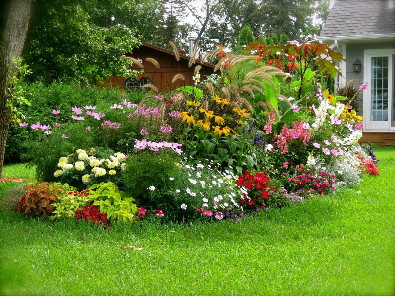 Växthuset tipsar om trädgården